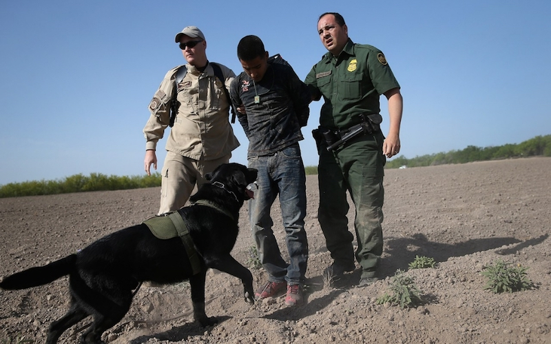 network border patrol Sub for more: | the conservative tribune reports, the head of one of america's largest border patrol union locals came out for pr.