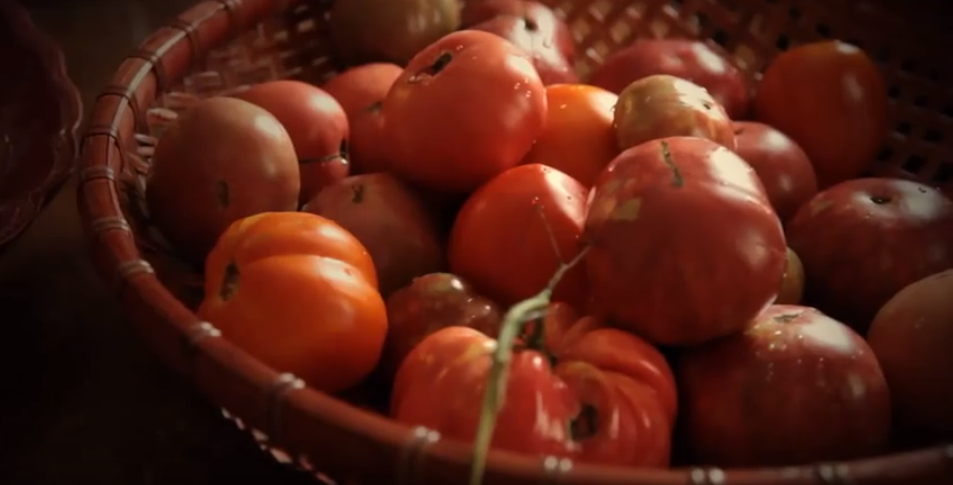 Growing-Tomatoes-Tips-and-Tricks